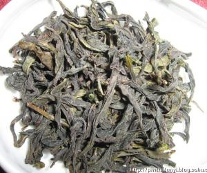 """品武夷山""""雀舌茶"""""""
