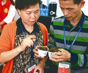一泡好茶是这样来的 ——武夷山茶界大师谈岩茶